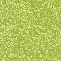 Vector cactus plants seamless pattern background with hand drawn