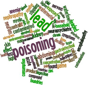 Word cloud for Lead poisoning