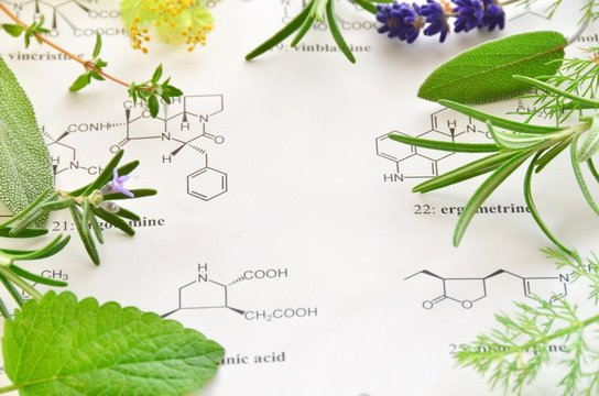 herb and science