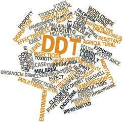 Word cloud for DDT