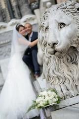Sposi sul leone