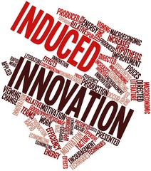 Word cloud for Induced innovation