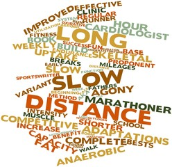 Word cloud for Long slow distance