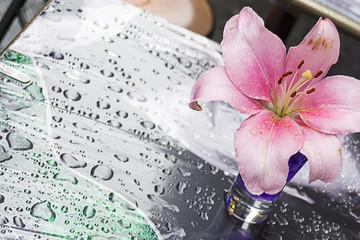 Giglio lilla su un tavolo bagnato con la pioggia