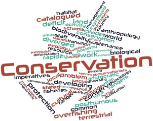 Word cloud for Conservation