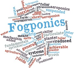 Word cloud for Fogponics