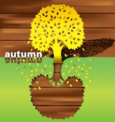 silhouette tree autumn
