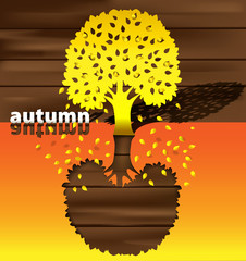 autumn time of the year