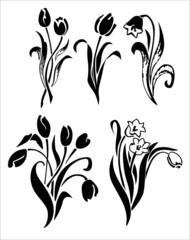 Tulips silhouette