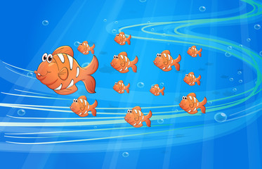 Poster Submarine Fishes