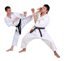 Karate. Men in a kimono with a white background