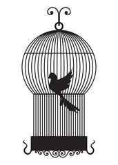 Recess Fitting Birds in cages Bird cage