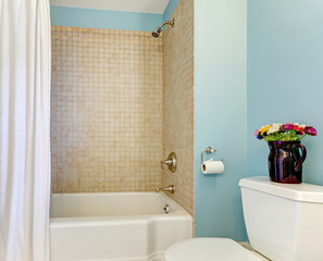 Blue bathroom with tub and shower.