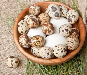 chicken and quail eggs in a wooden bowl