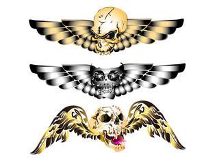 skull wings design
