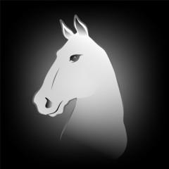 Pferd1012a