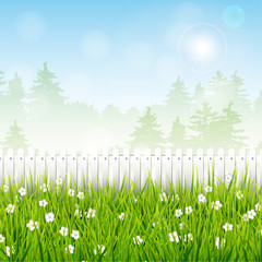 Spring landscape with white fence