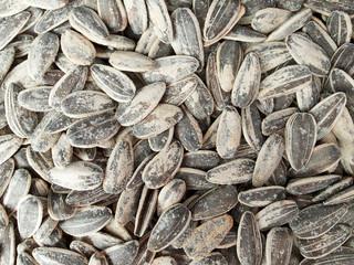sunflower seeds texture background