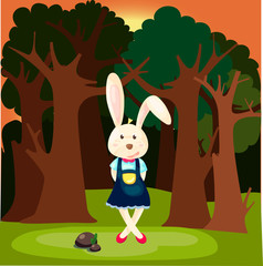 cute rabbit in the forest