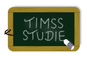 Schultafel, TIMSS-Studie