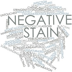 Word cloud for Negative stain
