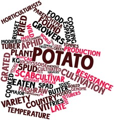 Word cloud for Potato