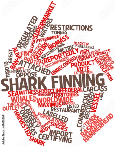 word cloud for shark finning stock photo and royalty free images on National Word word cloud for shark finning