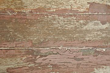 Fototapete - Old wood texture background