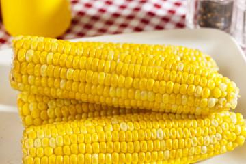 Fresh Organic Yellow Corn on the Cob