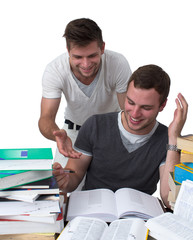Two young men studying together