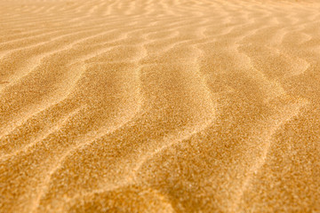 Clean rippled sand on the beach