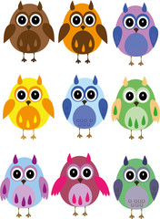 Vector illustration - colorful owls on a white background
