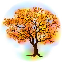 Beautiful autumn tree