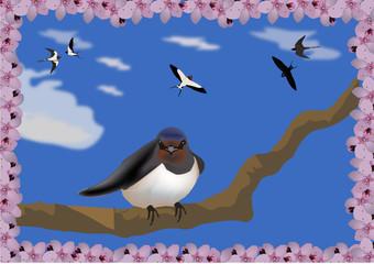 Poster Oiseaux, Abeilles rondine