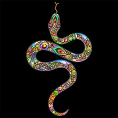 Snake Psychedelic Art Design-Serpente Simbolo Psichedelico