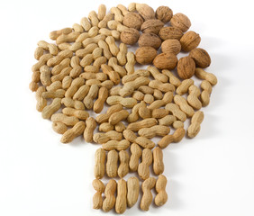 Peanuts and Walnuts in a Tree Shape