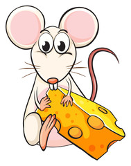 A mouse and cheese