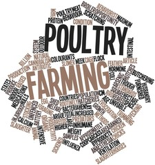 Word cloud for Poultry farming