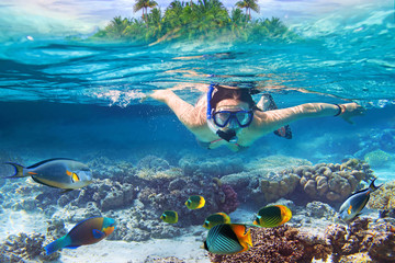 Wall Murals Diving Young women at snorkeling in the tropical water