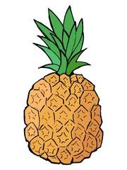 Hand drawn, vector, cartoon illustration of pineapple
