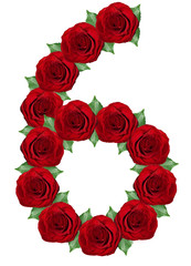 Number 6  made from  red roses and green leaves