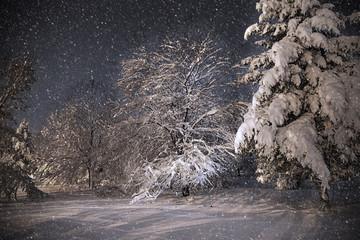 Night scene, dancing shadows on snow