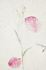 Fototapete - Mulberry paper texture background