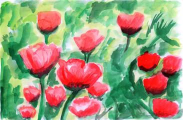 illustration Water color tulip