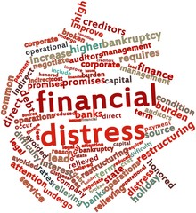 Word cloud for Financial distress