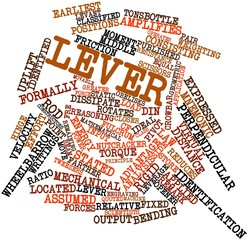 Word cloud for Lever