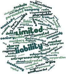 Word cloud for Limited liability