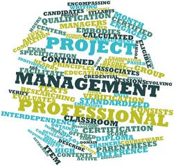 Word cloud for Project Management Professional