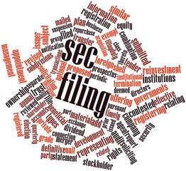 Word cloud for SEC filing