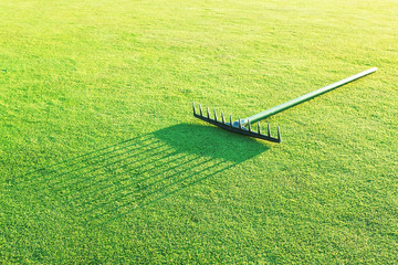 Rake on the green grass for golf.